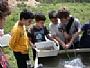 קמפוס טבע באוניברסיטת תל-אביב